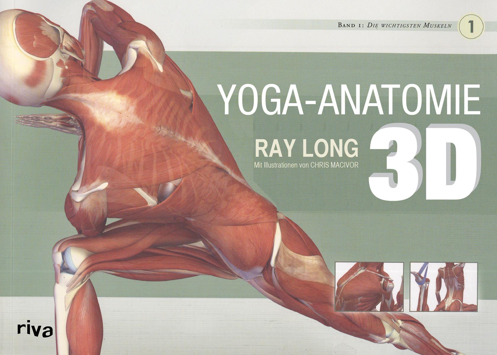 Yoga-Anatomie 3D - Band 1: Die wichtigsten Muskeln