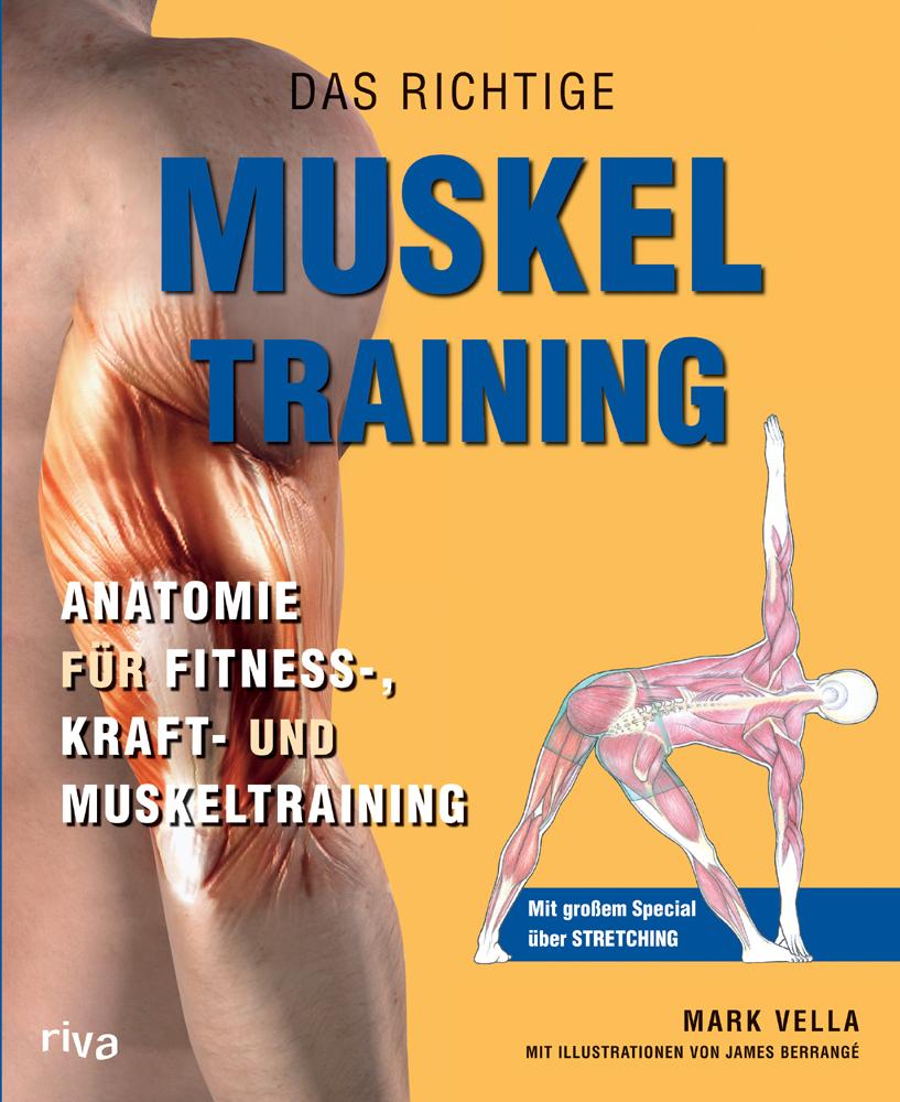 Das richtige Muskel Training - Anatomie für Fitness-, Kraft- und ...