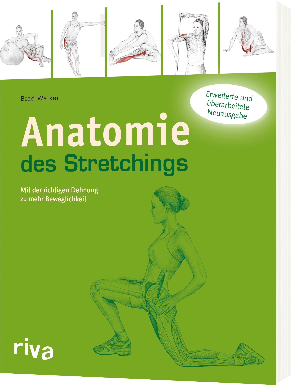 Anatomie des Stretchings - Mit der richtigen Dehnung zu mehr ...